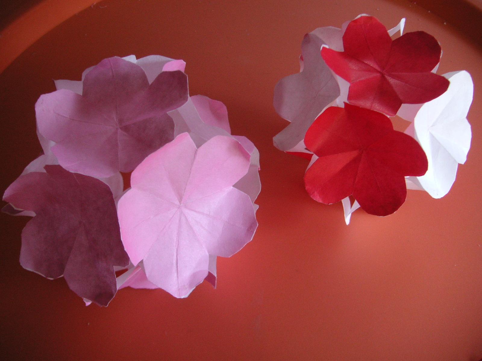 すべての折り紙 折り紙梅の花折り方 : この花を12枚づつまとめて玉 ...